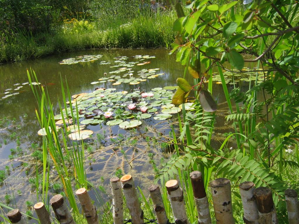 juillet2009gxochaumont080.jpg